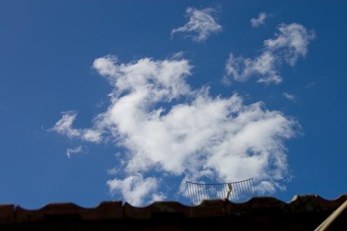 Dragón en el cielo-0255