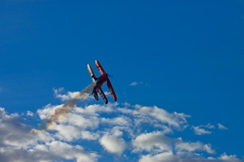 Malatini en un cielo turquesa-1259