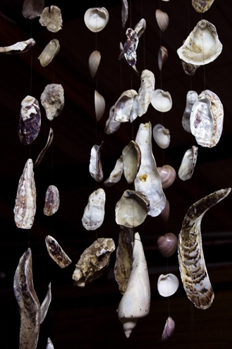 Caracolas-2372