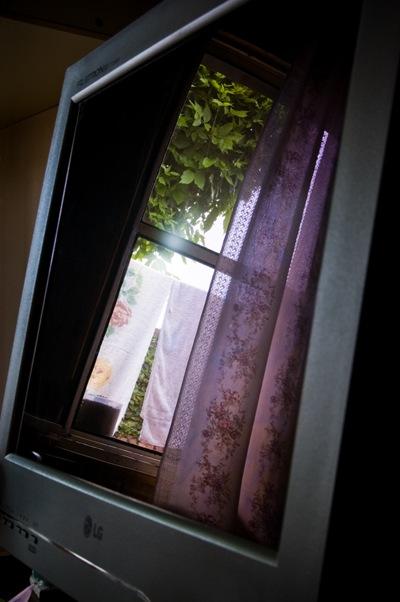 Windows-5691