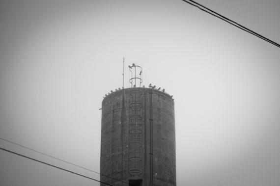 niebla-8359
