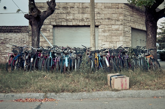 monton de bicicletas-8401