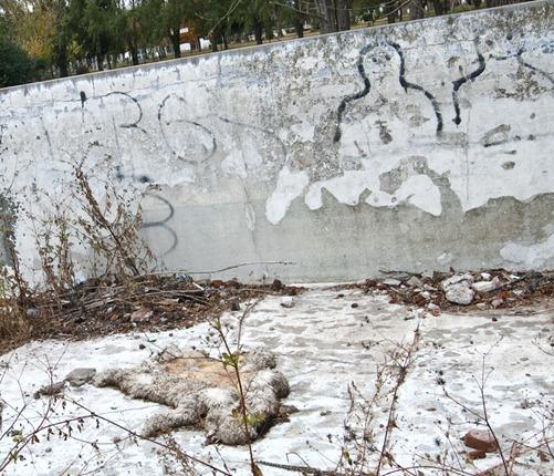 graffiti en pielta y cuero de oveja-8939