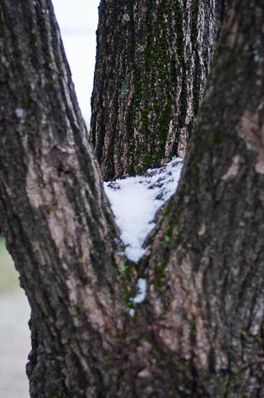 nieve en casares-9921-2