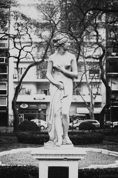 jardin botanico-_DSC8951-Editar