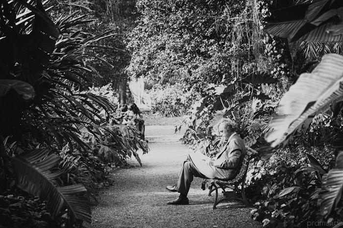jardin botanico-_DSC8982-Editar-2