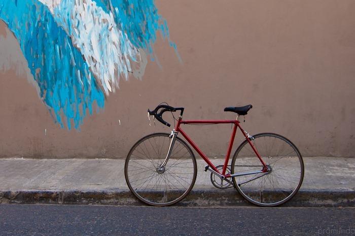 bicicleta-_DSC9795