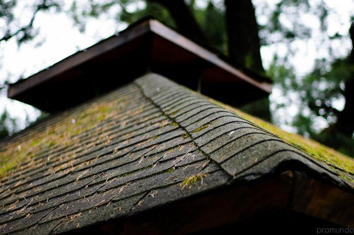 jardin japones-_DSC1436