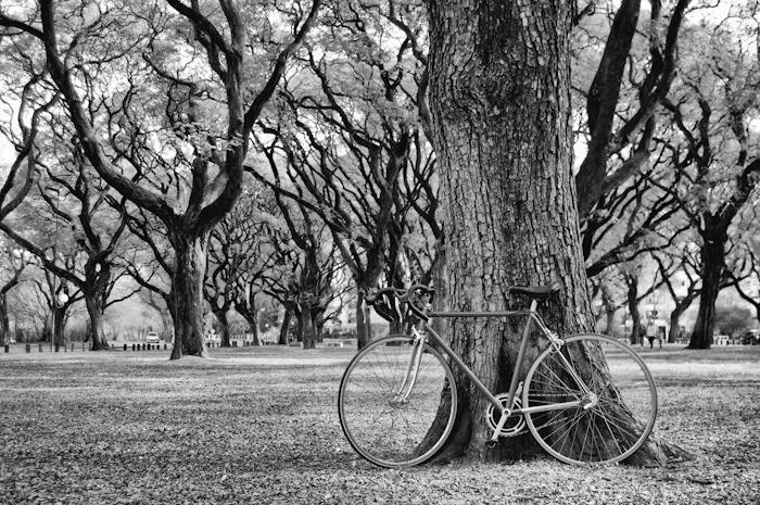 bicicleta-_DSC2208-Editar