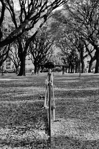 bicicleta-_DSC2214-Editar