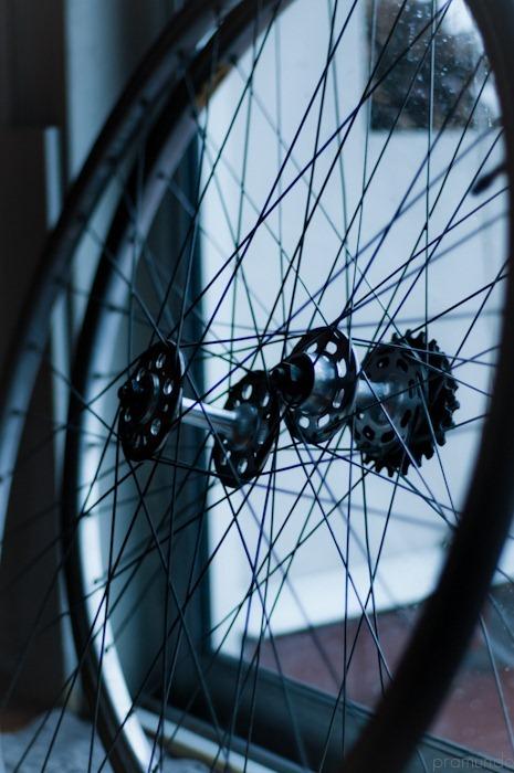 ruedas-_DSC2619